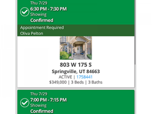 803 W 175 S Springville UT